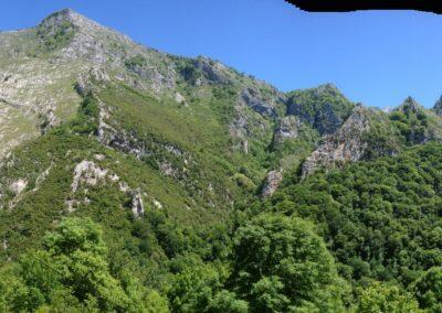 Aguas del Beyo jardin montaña